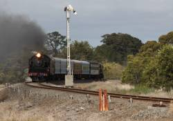 Passing the home signal at Meredith