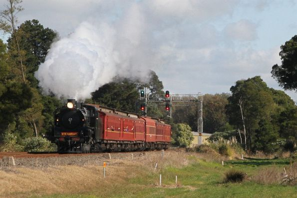 Steamrail - A2 986 'Spirit of Warragul' May 2017