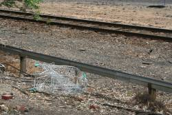 Shopping trolley smashed by a passing train at Benalla