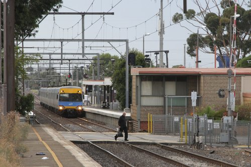 Another pedestrian races across the level crossing as a stopping train approaches