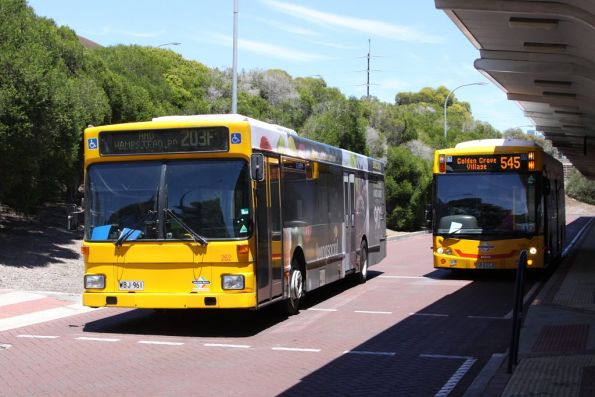 #262 at Tea Tree Plaza Interchange
