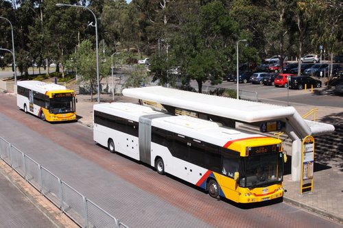 #1112 stops for passengers at Klemzig Station, with another bus doing the same behind