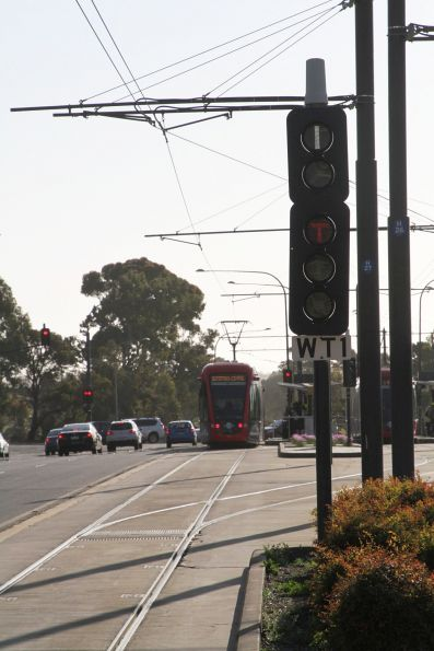 Tram signal and point indicator at Royal Adelaide Hospital