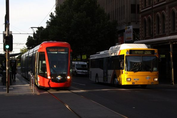 Catching the afternoon sun, southbound Citadis 202 parallels an AdelaideMetro bus on King William Street