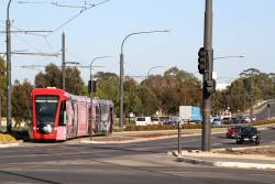 Citadis #206 heads east at the Royal Adelaide Hospital stop