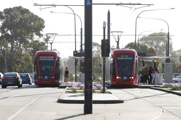 Citadis #203 and #209 pass at Royal Adelaide Hospital