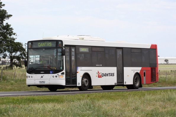 Qantas liveried bus #42 7332AO on a employee shuttle trip at Melbourne Airport