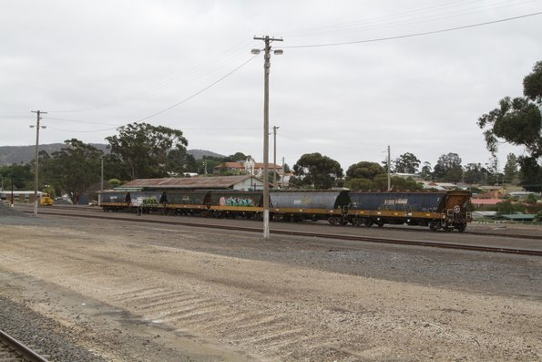 Rake of Pacific National VHAF wagons stabled in the yard at Ararat