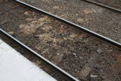 Gunk on the tracks after a water main burst at Ascot Vale station