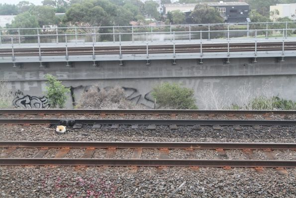 Old fashioned 'grease pot' rail lubricator spilling grease all over the tracks at Maribyrnong River Junction