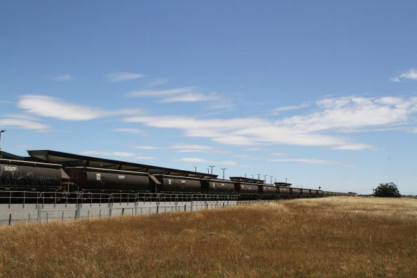 BGKF grain wagons in the consist of the SSR train at Caroline Springs