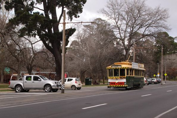 Tram 33 out on Wendouree Parade