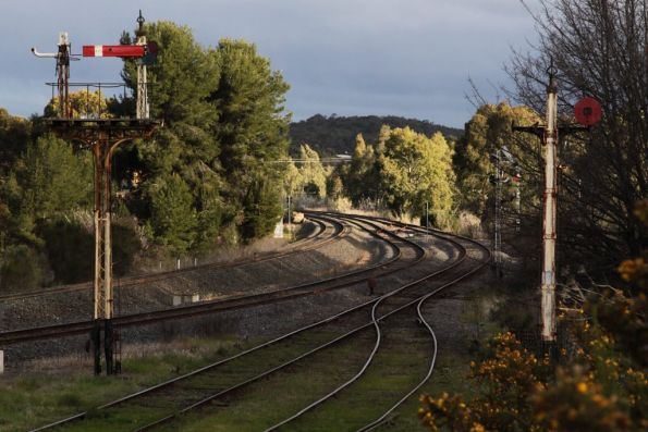 Semaphore signals for the VGR tracks at Castlemaine