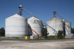 Repainting the steel grain silos at Bordertown