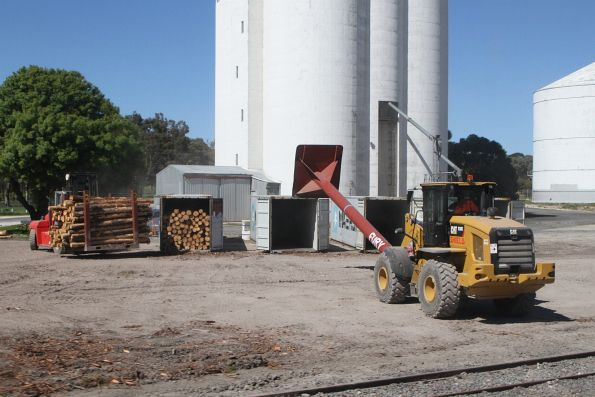Front end loader pushes logs into a 40 foot ISO container at Bordertown