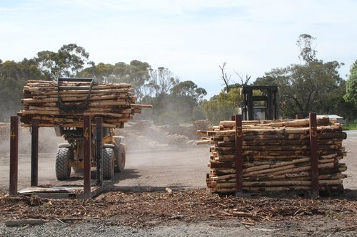 Loader delivers another claw full of logs into the cradle