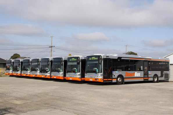 Lineup of eight Invicta and Grendas buses in the Smartbus livery at the Tullamarine Bus Lines depot