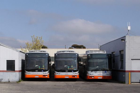 East West and Grendas buses in the Smartbus livery at the Tullamarine Bus Lines depot