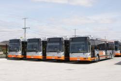 Grenda operated Smartbuses #8296, #8297, #8385 and #8291 stabled at the Tullamarine Bus Lines depot