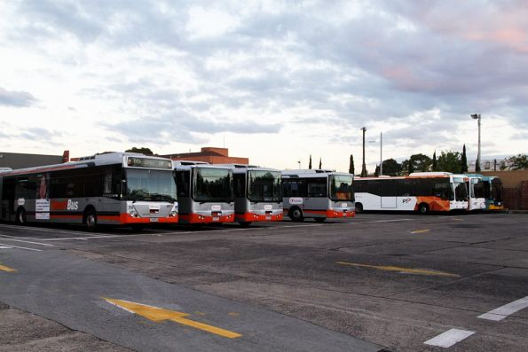 Lineup of Smartbus and PTV liveried buses at the Transdev depot in North Fitzroy