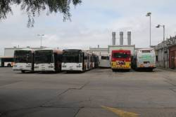 Transdev buses #365, #359, #366, #707, #277 and #647 in the depot at Footscray