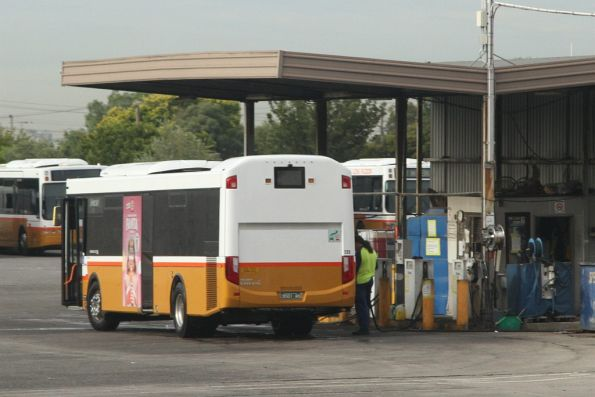 Refuelling a Sita bus at their depot in West Footscray