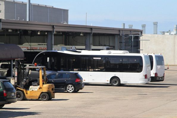 Pair of brand new Optare Solo buses in the Sita Buslines depot
