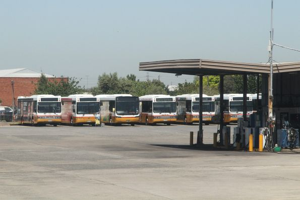 Line up of Sita buses at their depot in West Footscray