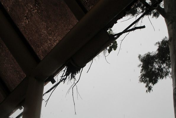 Rusted guttering and now leaking guttering at the La Trobe University bus terminus in Bundoora