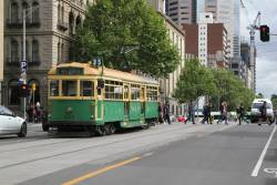 W8.946 northbound at Spring and Little Collins Street
