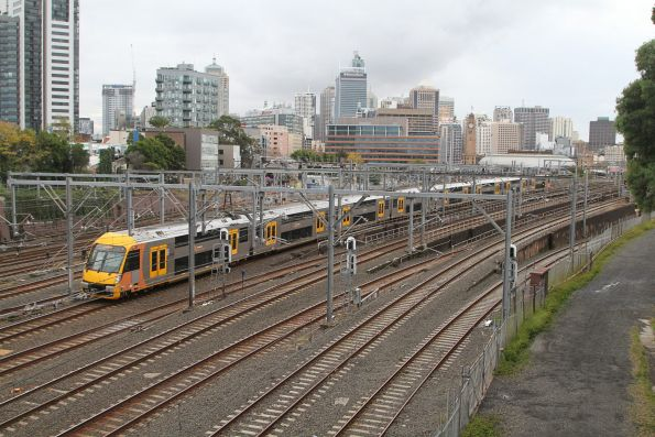 Waratah train climbs the flying junctions at Central