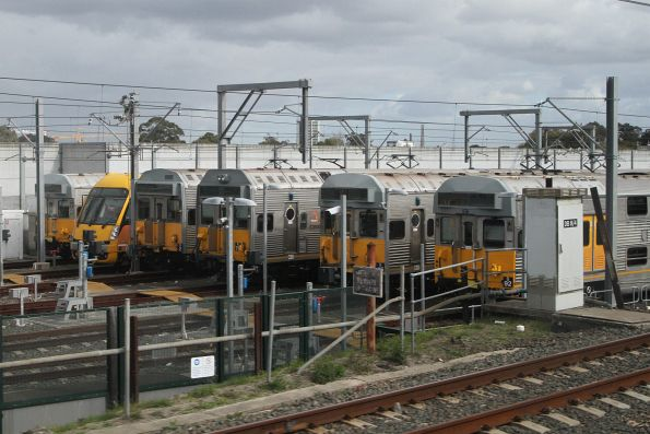 Single Waratah train among the S sets stabled at the Macdonaldtown sidings