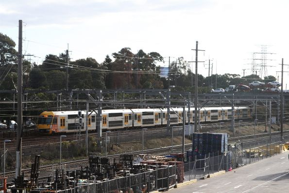 Waratah train passes Flemington station