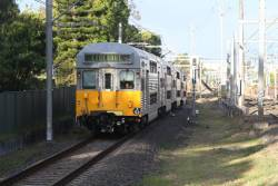 S53 approaches Lidcombe on the 'Olympic Park Sprint'