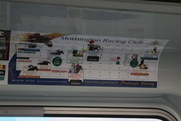 Out of date advertisement train for the Mornington Racing Club onboard a Comeng - detailing November, December and January race meetings
