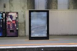 New Adshel advertising panel at North Melbourne platform 1