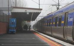 Comeng in the fog at Glenferrie