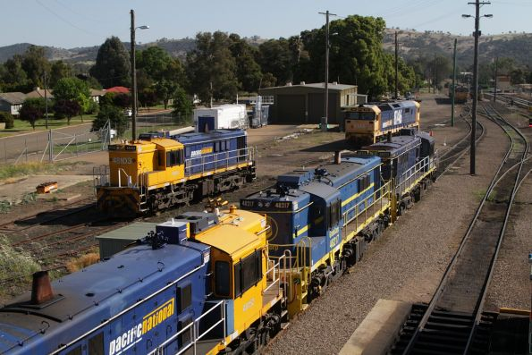 48152, 48217, 48215, 48103 and 8146 among the stabled locomotives at Cootamundra