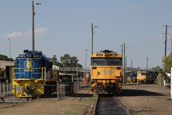 48213 and 8148 stabled in the loco depot at Cootamundra