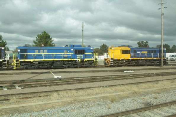GrainCorp 48217 and Pacific National 48144 at Cootamundra