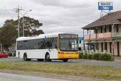 Cranbourne Transit  bus #62 7084AO on route 893 along Princes Highway, Hallam