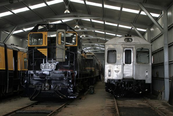 Y159 and DRC40 in the storage shed at Daylesford