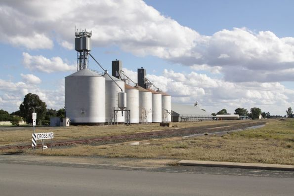Grain silos at the up end of Deniliquin yard