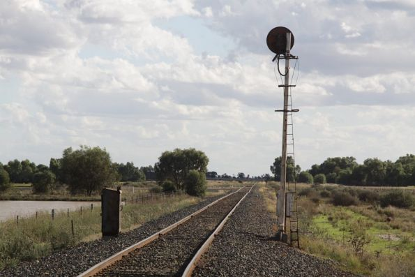 Signal for trains approaching the Sunrice plant sidings at Deniliquin