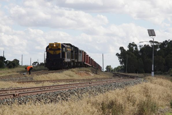 The train in the clear at the Deniliquin Rice Growers Siding