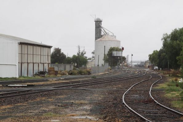 Down end of the yard at Echuca, the wharf line enters from the right