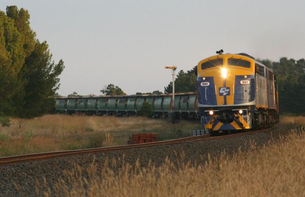 El Zorro grain passing the up distant signal at Meredith