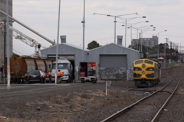 S303, B74, T378 and Y145 on an El Zorro grain train getting attention at the Sunshine GEB silos