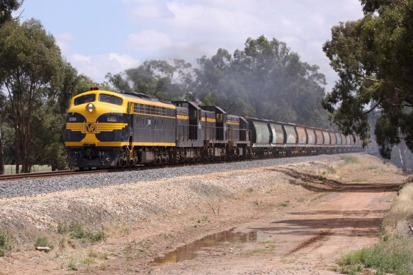 El Zorro grain trains