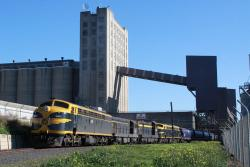 Another 4 wagons along, the grain elevator towers overhead